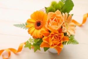 オレンジ 花 綺麗