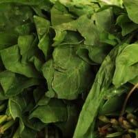 葉酸,食品,ほうれん草