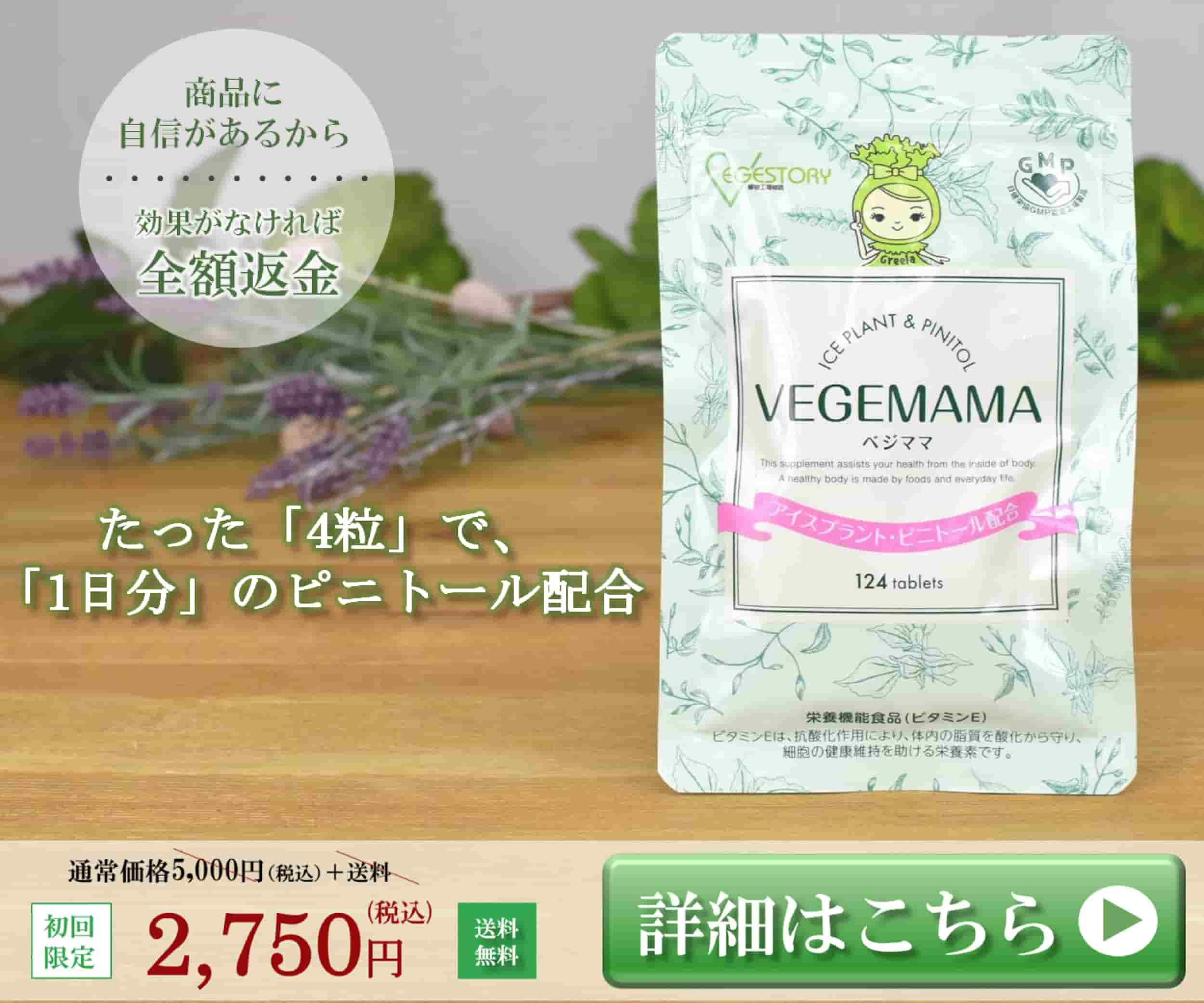 vegemama_banner600500-min